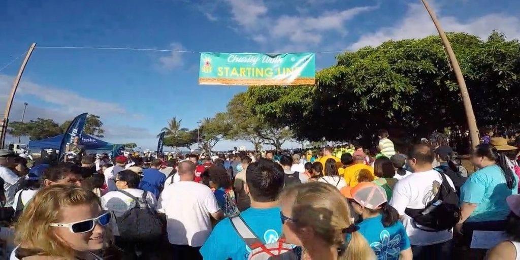 Hawai'i Visitor Industry Charity Walk - Hoʻōla Nā Pua